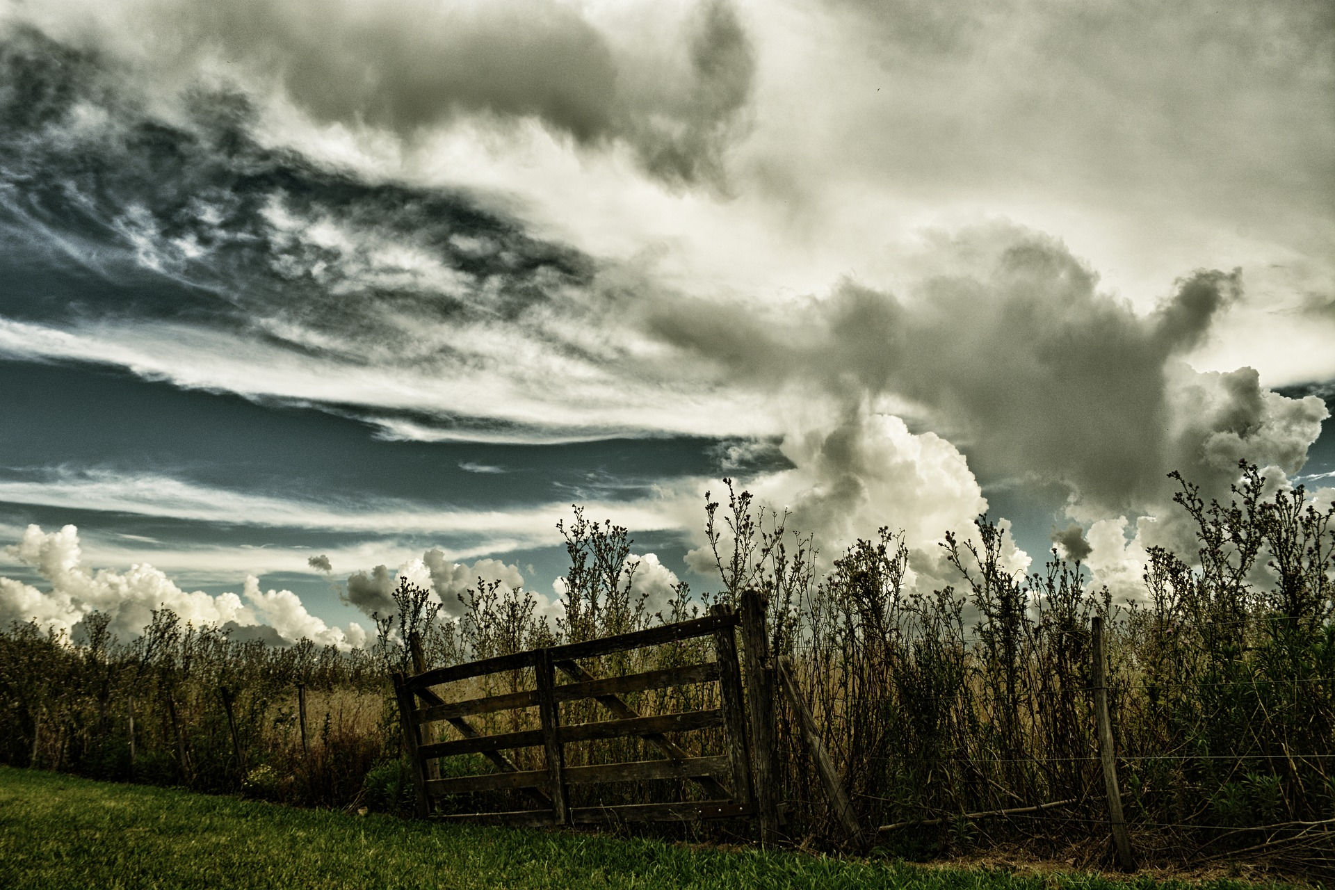 gate storm fence